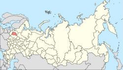 Нижнее бельё МонМио Новгородская область